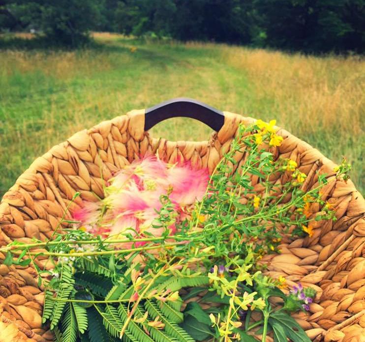 basket-o-plants.jpg
